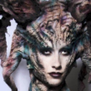 Maquillage F.X. Niveau 1